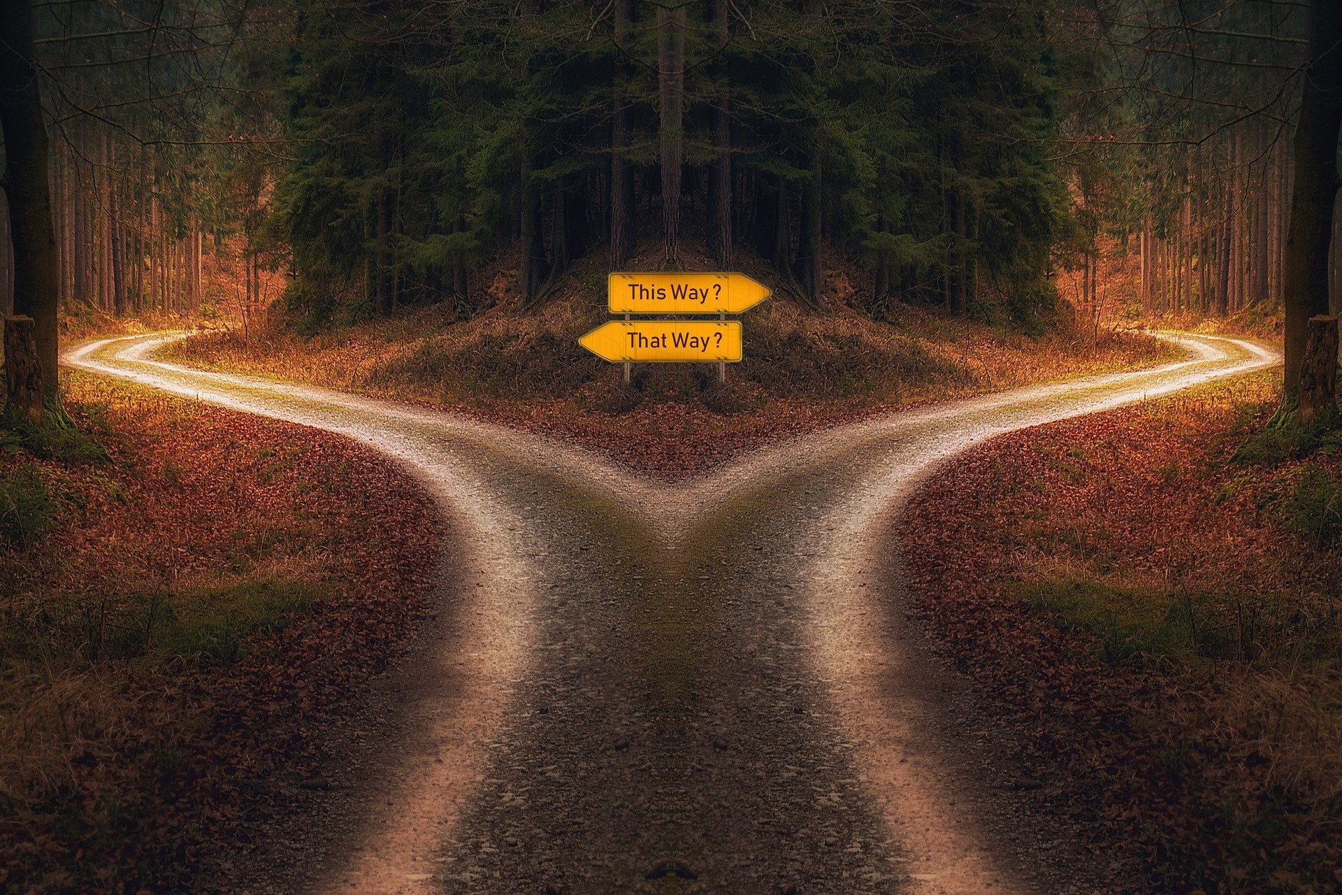 Image of a road with two paths